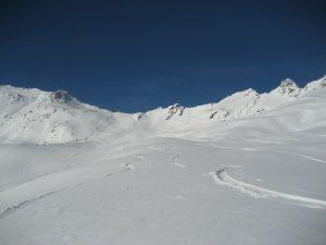 Gant snowboard