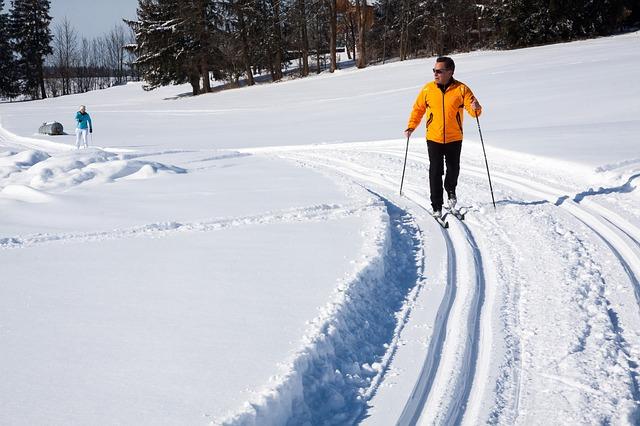 comparatif baton de ski