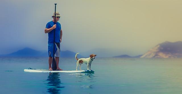 comparatif paddle peche