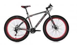 fatbike moma bikes