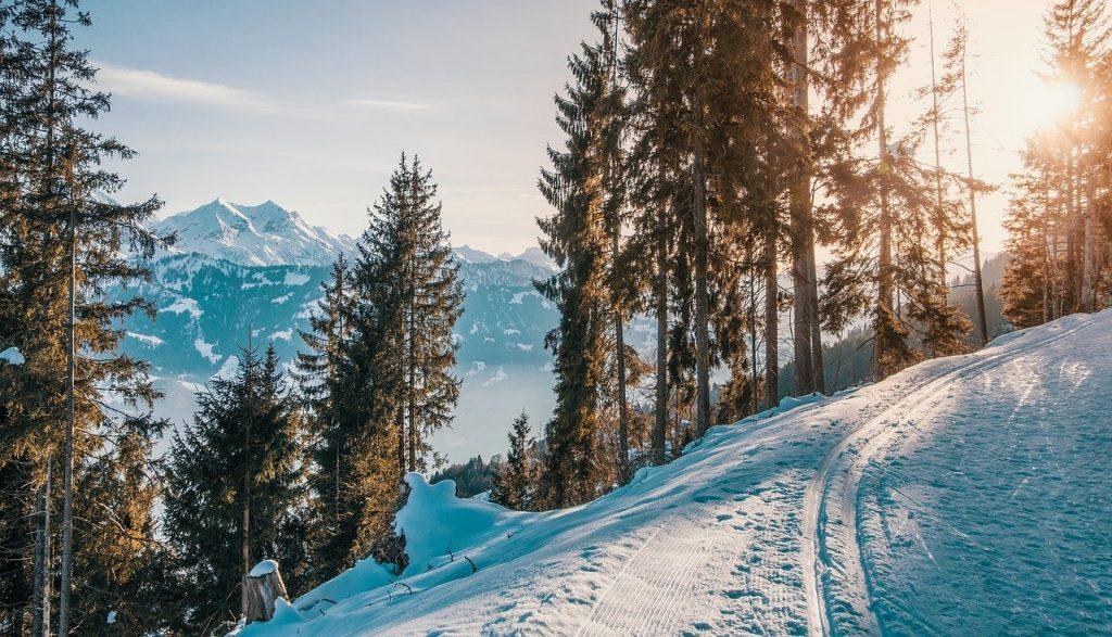 marque porte ski