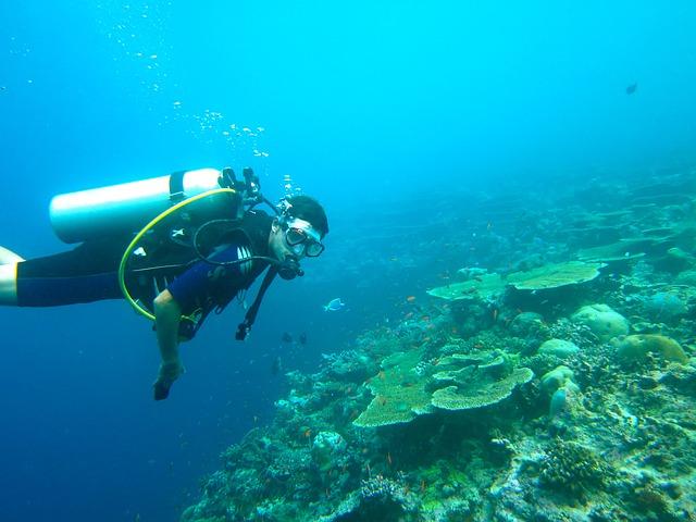 avis boussole de plongee