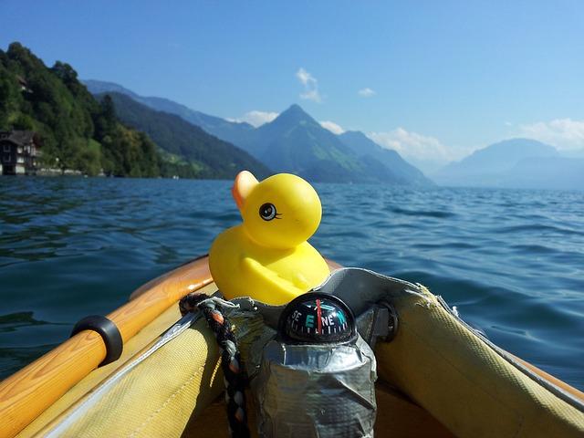 avis kayak de chasse au canard