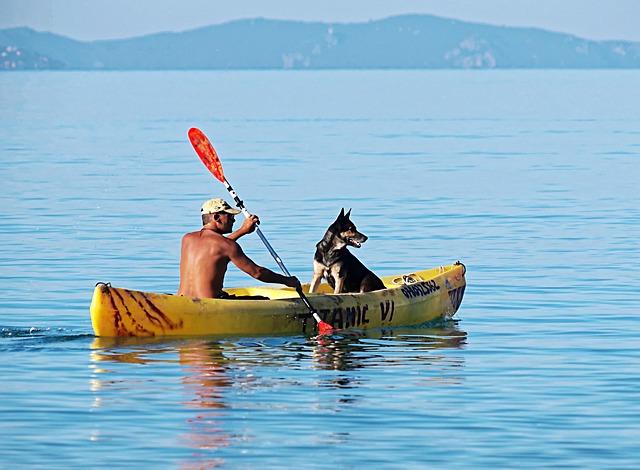 comparatif kayak pour chien