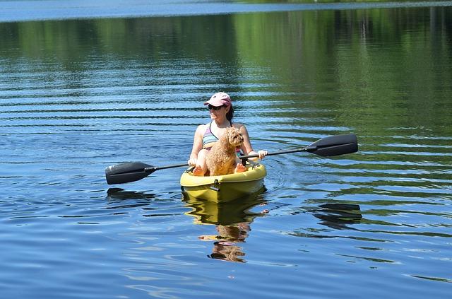 liste kayak pour chien