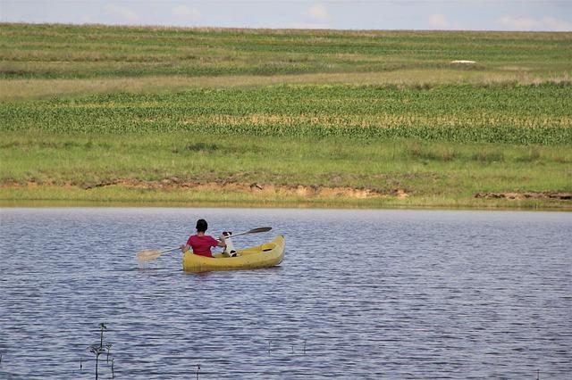 marque kayak pour chien