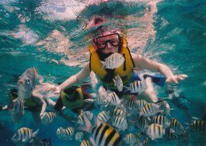 marque masque de plongee en apnee