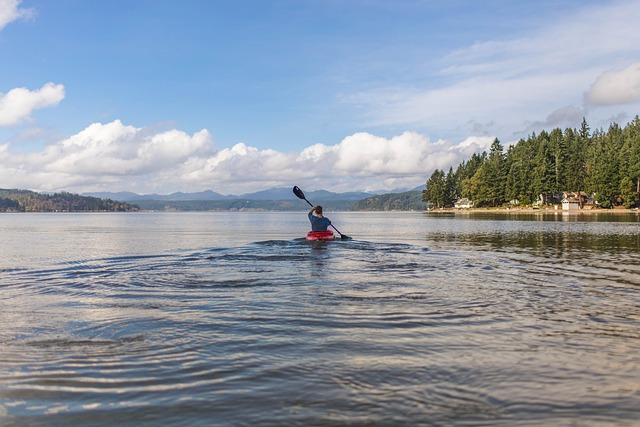 meilleur pagaie de kayak